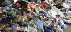 Source Reduction, On-Site Processing and Storage Of Solid Waste