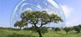 8 Ways To Save The World Environment